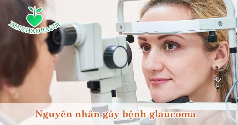Nguyên nhân gây glaucoma là gì? Các đối tượng dễ mắc bệnh